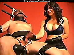 Dominatrix Cock And Balls Torture